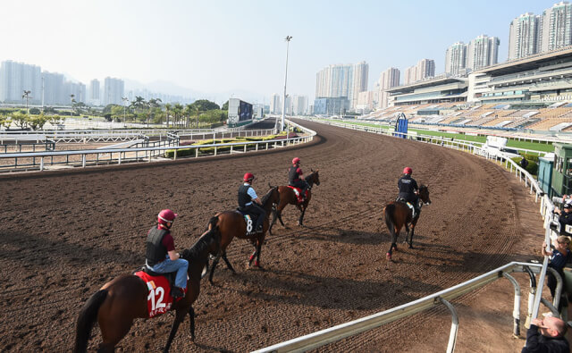 Sha Tin Trackwork